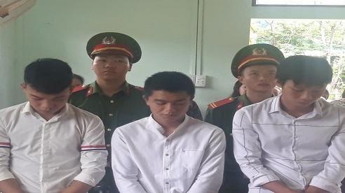 Xúc phạm Quốc kỳ, 3 thanh niên ở Quảng Bình lãnh án