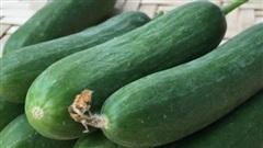 Những điều bạn phải biết trước khi ăn dưa chuột