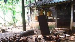 Quảng Nam: Thu nhập bình quân của hộ nghèo tăng khoảng 1,57 lần