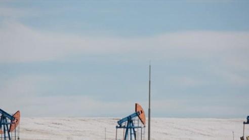 Giá xăng dầu hôm nay 10/10: Quay đầu lao dốc