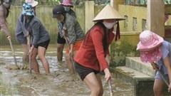 Quảng Bình dọn vệ sinh đón học sinh trở lại trường