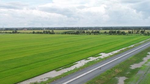Thông xe kỹ thuật đường cao tốc 6.355 tỷ đồng tại Tây Nam Bộ