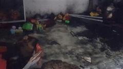 Nghịch lửa, 2 cháu bé tử vong: Lời gia đình