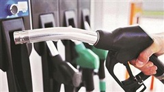 Giá xăng dầu hôm nay 19/10: Khó dự báo do tác động của dịch Covid-19