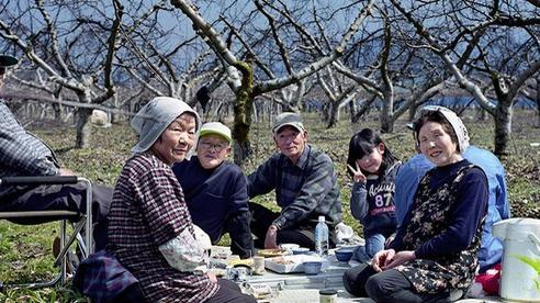 Có gì trong chế độ ăn uống của người Nhật khiến cả thế giới phải học hỏi?