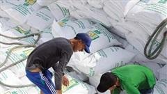 Gạo Việt đắt khách, giá tăng 12,4%