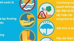 [Graphic] Bộ Y tế hướng dẫn phòng chống dịch bệnh mùa mưa bão