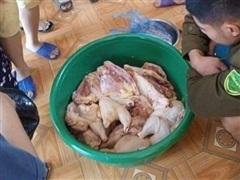 Trường mầm non dừng dạy bán trú sau khi phụ huynh tố nhập thịt gà ôi