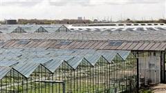 EU : Hệ sinh thái tự nhiên đang xuống cấp trầm trọng