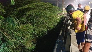 Bình Dương: Phát hiện thi thể hai thanh niên nằm úp mặt dưới gầm cầu