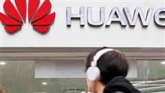 Giải mã 'văn hóa đàn sói' ở Huawei: Khi hiểu biết luôn đi kèm làm chủ hành động, thuyết phục song hành với hy sinh