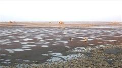 Cần tăng cường khả năng chống chịu mới cho khu vực ven biển