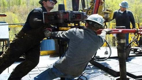 Những 'cuộc hôn nhân lý trí' trong ngành công nghiệp dầu mỏ Mỹ