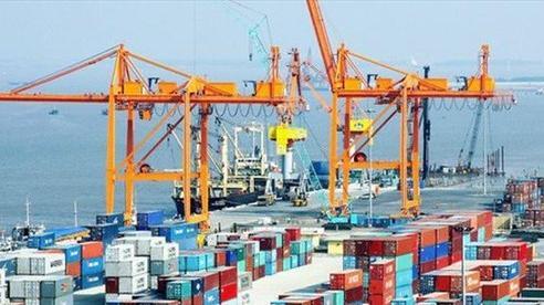 Bất chấp COVID-19, hàng hóa container qua cảng biển vẫn tăng mạnh