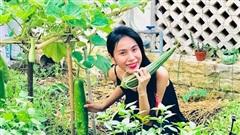 Cuộc sống giản đơn của Công Vinh - Thuỷ Tiên: Cùng chăm sóc vườn rau sạch, tự thu hoạch củ quả và tặng hàng xóm