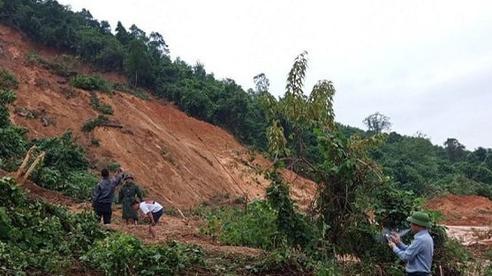 Đã tìm thấy 4 thi thể người dân bị đất lấp khi vào rừng lấy trầm