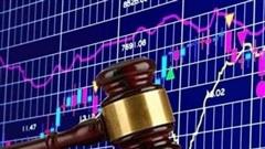 Tiêu điểm xử phạt tuần qua: Thêm nhiều doanh nghiệp và cá nhân bị UBCKNN phạt nặng