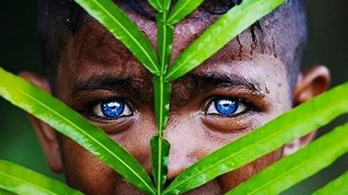 Bộ lạc mắt xanh như đại dương