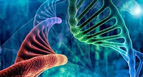 Có một loại ADN không code