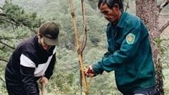 Hà Anh Tuấn trồng 1.800 cây phủ kín hai cánh rừng ở Lâm Đồng, Đà Nẵng