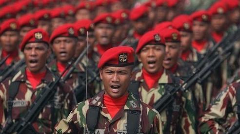 Các lực lượng tác chiến nổi tiếng hàng đầu ở Đông Nam Á