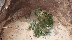 Quảng Bình xuất hiện hố sâu 5m trong vườn nhà dân sau tiếng động lớn