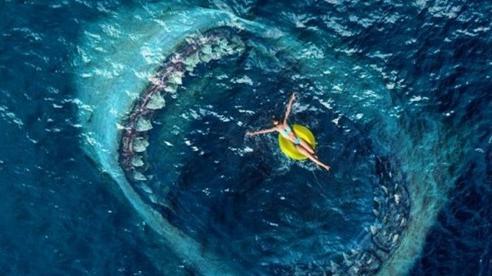 Phim về cá mập bạo chúa 'The Meg 2' tìm được đạo diễn