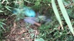 Phát hiện nam thanh niên nằm tử vong cạnh một bao tải đựng chó trong rừng tràm