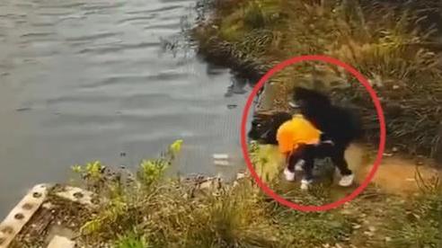 Thừa dịp bạn cúi xuống buộc dây giày, người phụ nữ xô bạn xuống hồ nước và cái kết đau lòng cho cả hai