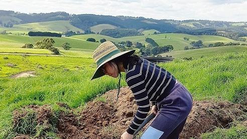 Cô giáo theo chồng sang Úc tiếp quản trang trại rộng lớn khiến ai cũng ngỡ ngàng