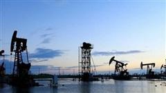 Giá xăng dầu hôm nay 26/10: Nhu cầu yếu, dầu tiếp tục giảm giá phiên đầu tuần