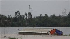 Khẩn trương hoàn thành việc sơ tán hơn 400.000 người dân trong vùng nguy hiểm của bão số 9 trước 19h tối nay