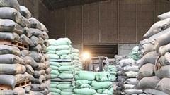 Xuất cấp bổ sung 6.500 tấn gạo cho 4 tỉnh miền Trung