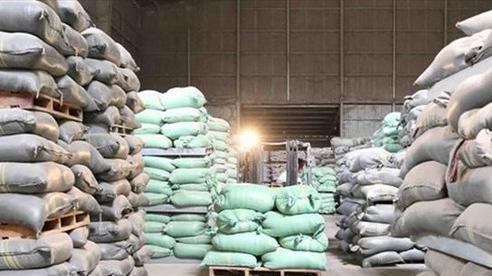 Thủ tướng ký quyết định cấp bổ sung 6.500 tấn gạo cho 4 tỉnh miền Trung