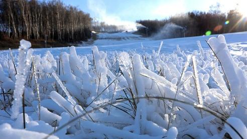24h qua ảnh: Băng tuyết phủ trắng cánh đồng ở Trung Quốc