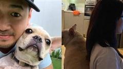 Phillip Nguyễn chúc sinh nhật cún cưng nhưng cứ phải đính kèm ảnh chụp lén Linh Rin: Chàng thiếu gia mê nàng lắm rồi!