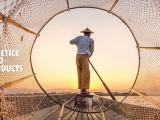 Cập nhật quy phạm thực hành vệ sinh cá và sản phẩm thủy sản
