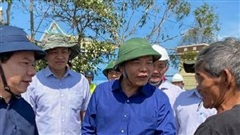 Quảng Ngãi: Cần 110 tỷ đồng để khắc phục hậu quả bão số 9
