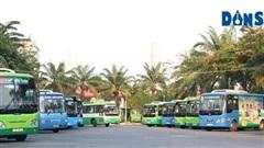 TP. HCM: Tăng cường vận tải hành khách công cộng kết hợp kiểm soát sử dụng phương tiện cơ giới cá nhân