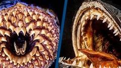 Bộ sưu tập quái vật biển kinh dị của chuyên gia Hà Lan