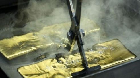 1.900 tấn – mỏ vàng lớn nhất thế giới được phát hiện ở Siberia