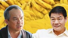 HAGL Agrico (HNG): 9 tháng lỗ ròng giảm mạnh về 340 tỷ, nợ nhóm Thaco gần 4.700 tỷ đồng