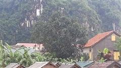Thiệt hại do thiên tai ước tính hơn 10,1 nghìn tỷ đồng