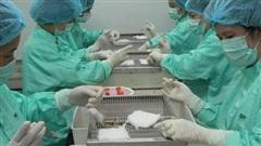 Việt Nam thử nghiệm lâm sàng vaccine COVID-19 trên người vào tháng 11
