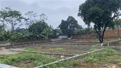 Đầu tư đất ở khu vực Tây Hà Nội, cứ 'om' 2 tháng là lời 4 giá?