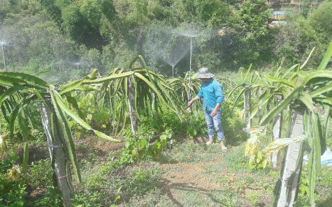 Lạng Sơn: Đời sống của người nghèo, cận nghèo được nâng lên