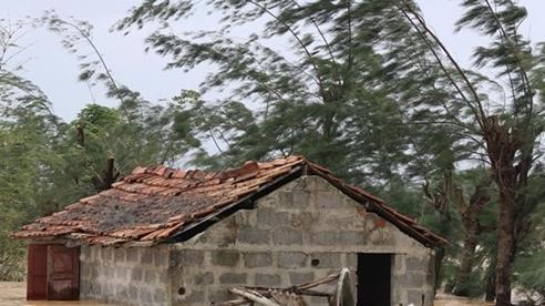 TP.HCM: Hỗ trợ người dân Quảng Nam sửa chữa nhà sau bão, lũ