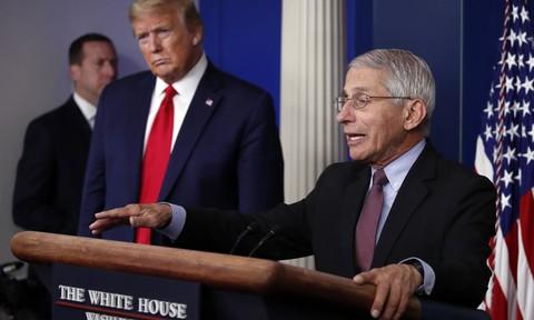 Trump 'úp mở' việc sa thải bác sĩ Fauci hậu bầu cử