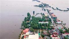 Đại biểu Quốc hội: 'Sạt lở, ngập lụt... là do mất quá nhiều rừng tự nhiên làm lá chắn'