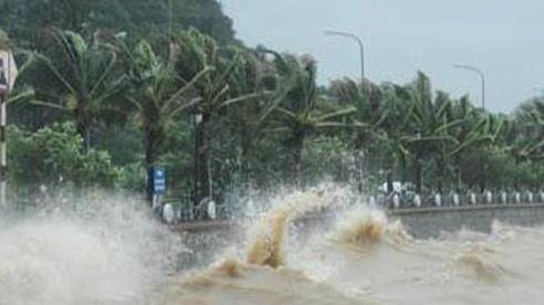 Phú Yên ra thông báo cấm biển từ 9h ngày 4/11 để ứng phó với bão số 10